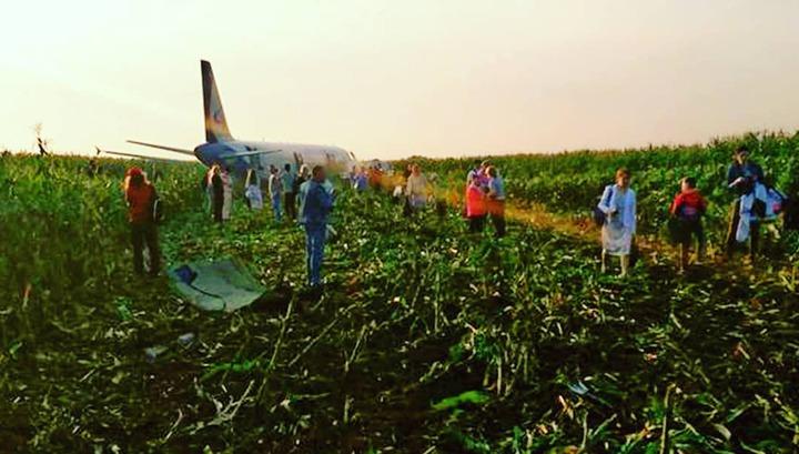Момент столкновения самолета Airbus с птицами в Подмосковье попал на видео