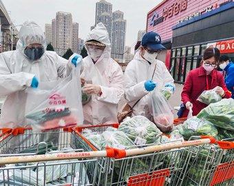 Убьет ли весна «китайскую чуму»: вирусолог ответил на 10 главных вопросов о коронавирусе