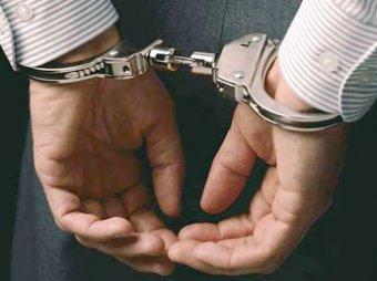В Подмосковье арестован педофил, назвавшийся помощником Жириновского