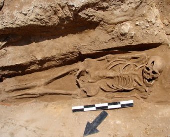 В Марокко найден скелет человека, жившего 5 тыс лет назад