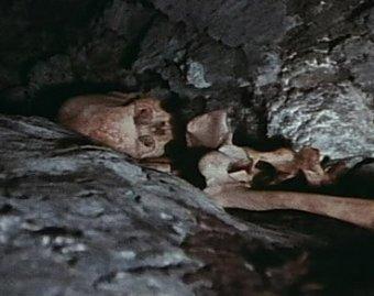 В Москве хозяева при ремонте квартиры нашли в стене скелет