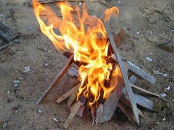 Две семьи москвичей сгорели на пикнике