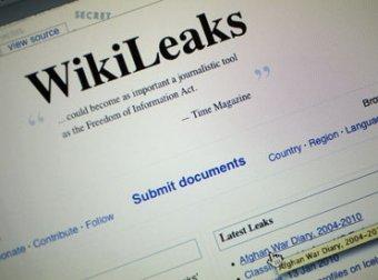 Скандальный сайт Wikileaks убит американскими программистами