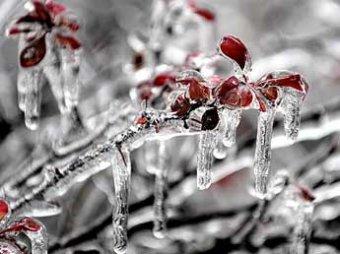 Центр России накроет «ледяной дождь»