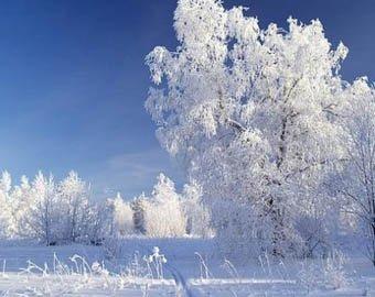 Москву ждет вторая волна морозов