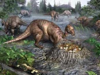 Ученые: на Земле скоро начнется массовое вымирание