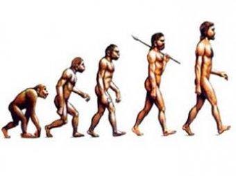 Биологи опытным путем доказали, что Дарвин был прав