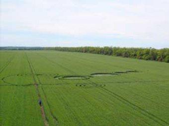 В Ставропольском крае появились загадочные круги на полях – дубль кругов из Краснодара