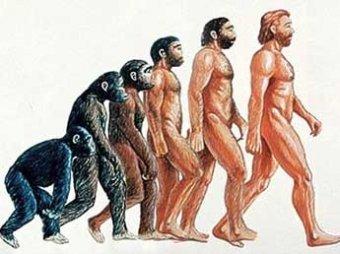 Ученые выяснили, под влиянием чего человек стал человеком