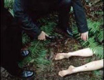 В Екатеринбурге ищут маньяка, жестоко убившего восьмиклассницу