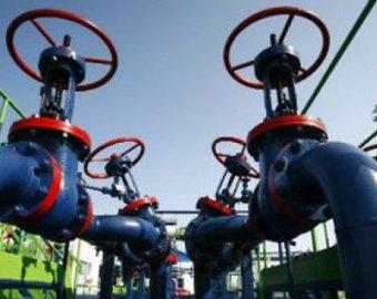 Янукович достиг в переговорах с тандемом «существенного прогресса» по газу
