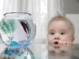В Москве годовалая девочка утонула в домашнем аквариуме