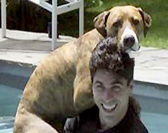 Ник Сантино покончил с собой после смерти любимого питбуля