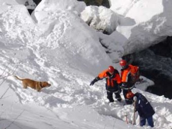 В Мурманской области при сходе лавины погибли туристы из Питера