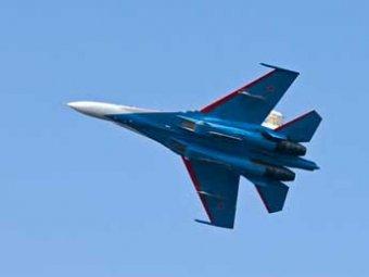 Истребитель Су-27 в небе над Карелией «сбила» птица