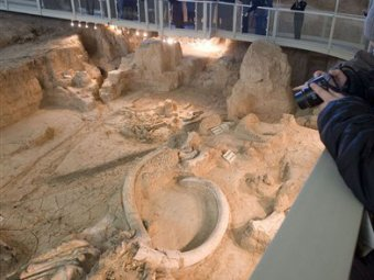 В Сербии обнаружено кладбище мамонтов
