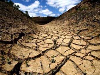 Ученые: до 2030 года около 100 миллионов человек умрут из-за изменения климата
