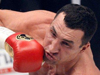 WBA одобрила перенос боя Кличко с Поветкиным