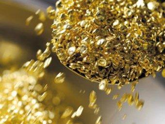 Канадские учёные научились выращивать золото из воды