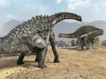 В Испании обнаружены яйца гигантских динозавров, отложенные 70 млн лет назад