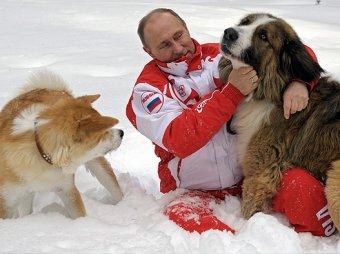 Фото Путина с собаками растащили по социальным сетям