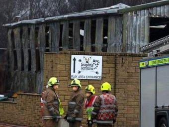 В шотландском зоопарке в пожаре погибли редкие животные