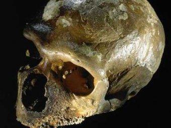Учёные обнаружили первый в мире гибрид неандертальца и человека