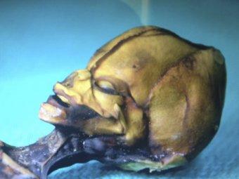 """Документальный фильм """"Сириус"""" докажет, что инопланетяне существуют"""