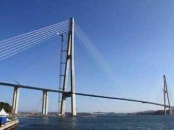 Глава крупной компании спрыгнул с моста, построенного к саммиту АТЭС