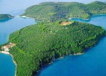 СМИ выяснили, кто из российских олигархов купил остров Онассиса