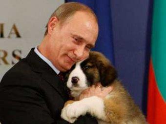 Политологи: скандальный развод может даже увеличить рейтинг Путина