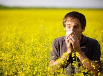 Ученые нашли белок, который излечит людей от большинства видов аллергии
