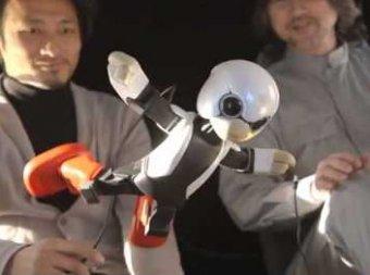 Япония запустила на МКС говорящего робота
