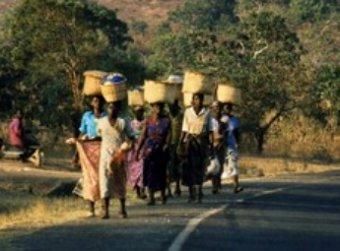 Продажа президентского самолета позволит накормить миллион голодных малавийцев