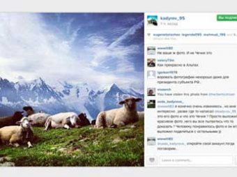 Голландец обвинил Кадырова в краже фото французских овец