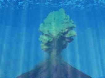Геофизики нашли в Тихом океане самый большой вулкан на Земле