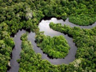 Археологи нашли в Амазонии следы неизвестной цивилизации