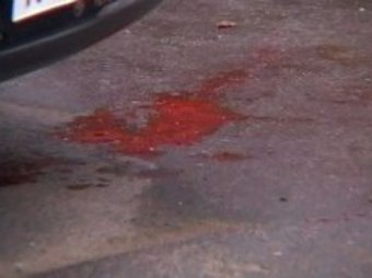 ДТП с участием депутата заксобрания Ленобласти: погиб пешеход