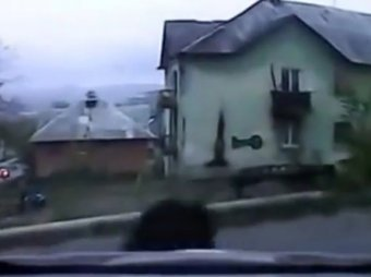 В Приморье дикого кабана до смерти забили раковиной и переехали автомобилем