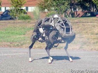 Самый быстрый в мире робот прошел уличные испытания