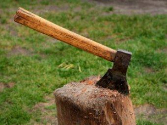 Под Тюменью найдены трупы пятерых лесорубов