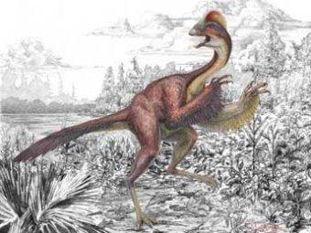 """Ученые нашли в США останки четырехметрового """"цыпленка из ада"""""""