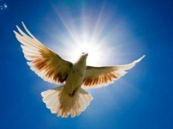 Благовещение в 2014 году 7 апреля: приметы и традиции праздника