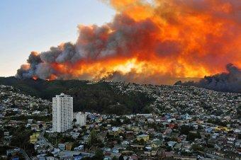 Пожар в Чили уничтожил 2 тысячи домов, погибли 16 человек