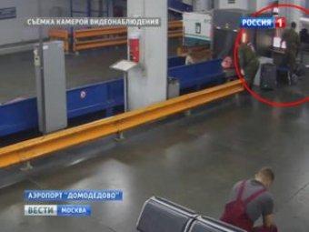 Таможенников из Домодедово подозревают в кражах из багажа пассажиров