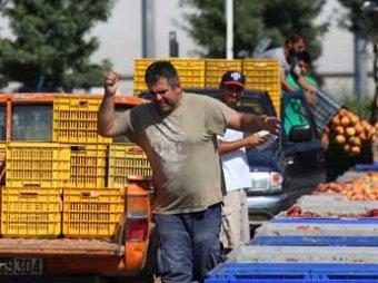 ИноСМИ: продуктовые санкции грозят разорением для фермеров Греции