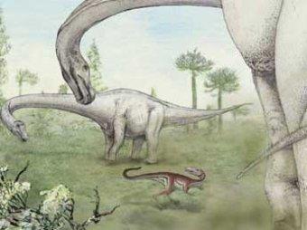 Ученые нашли скелет самого крупного динозавра в истории Земли