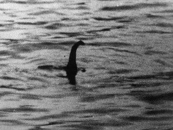 Лох-несское чудовище эмигрировало из Шотландии в Англию