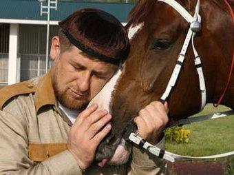 Кадыров поднял на смех власти Германии за санкции против его лошадей