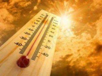 NASA: в 2015 году на Землю обрушится аномальная жара и сильная засуха